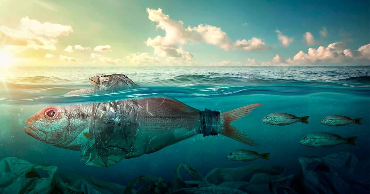 Harmful life below water